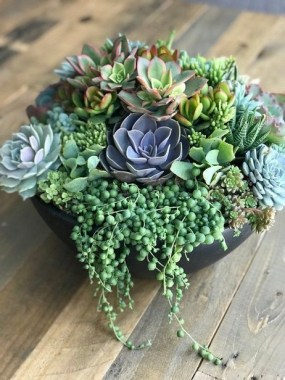 22 Beautiful And Incredible Fall Succulent Ideas 05 1