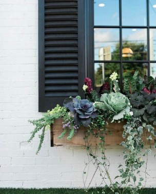 27 Cheap And Easy Fall Window Boxes Ideas 01