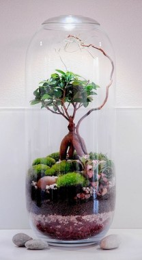 32 Simple Ideas For Adorable Terrariums 01