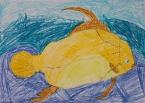Beautiful Fish Drawing