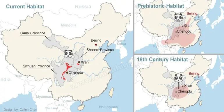 giant panda range habitat