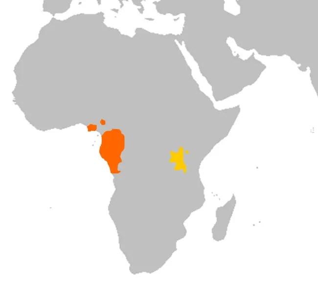 Gorilla Habitat Map