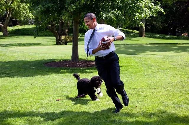Barack Obama Biography For Kids