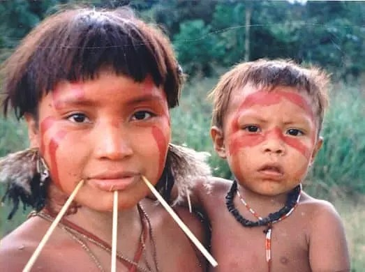 Amazon Rainforest Tribes