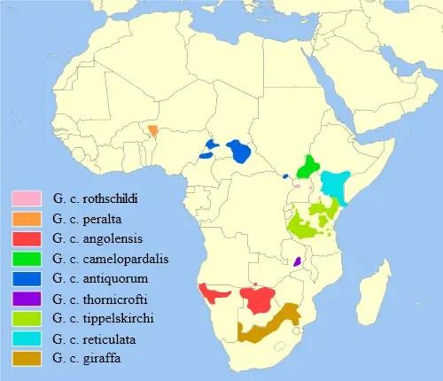Giraffe Habitat Map