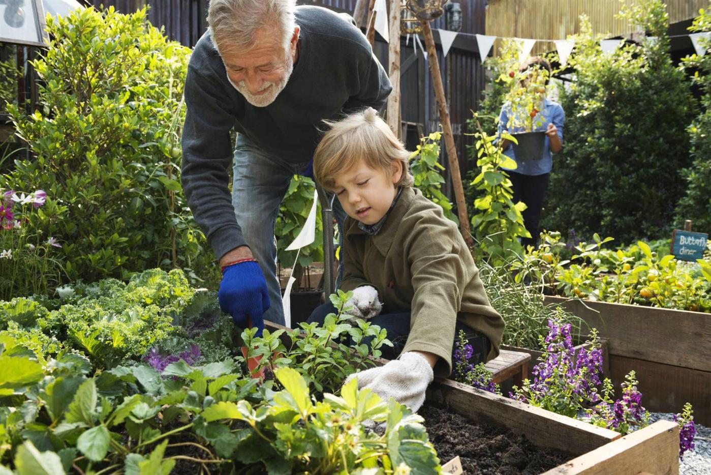 Growing with Kids: The Magic of Gardening - Kidzu on Gardening  id=31329