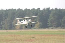 kiebitz-landeanflug-1