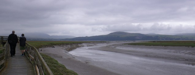 On route to the bird hide at Wigtown Harbour (c) Sally Hutt