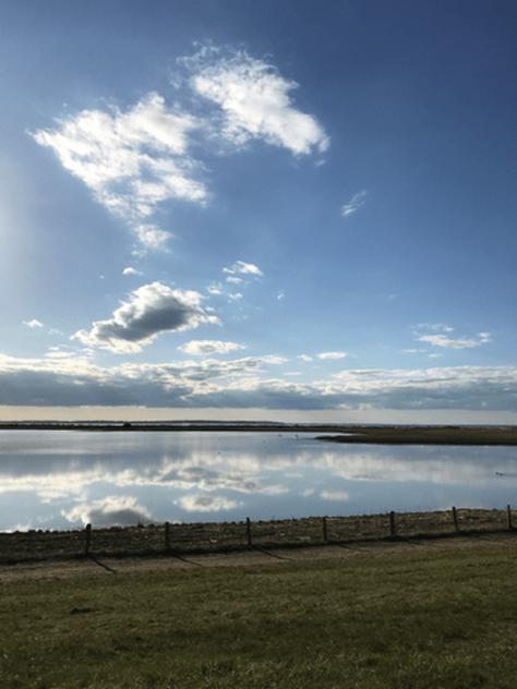 Bottsand Watt Ende April 2020. Foto C. Prepernau