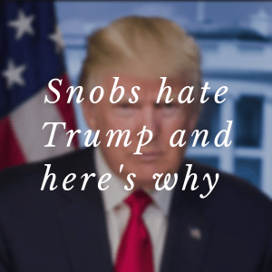 Trump, Donald Trump, POTUS, snobs