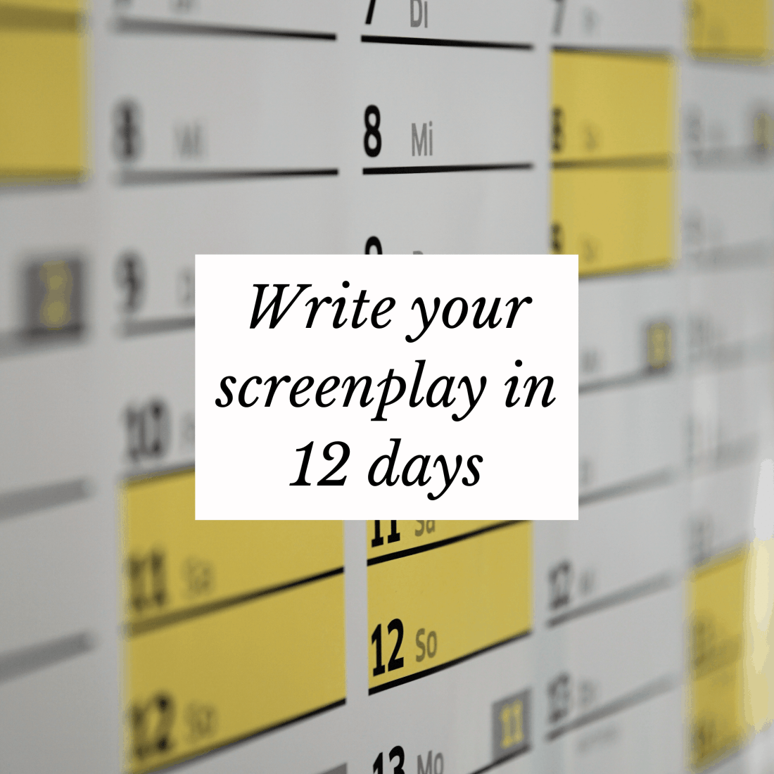 Write Your Screenplay in 12 days ebook