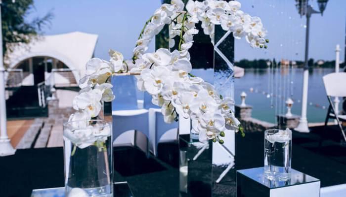 orchid-wedding5