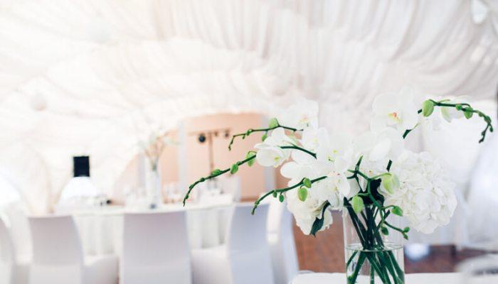 orchid-wedding2