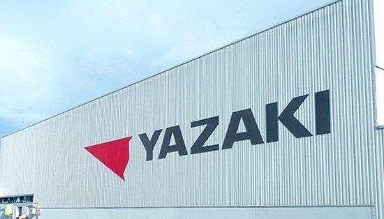 ياكازاكي.. البحث عن 20 موظفا