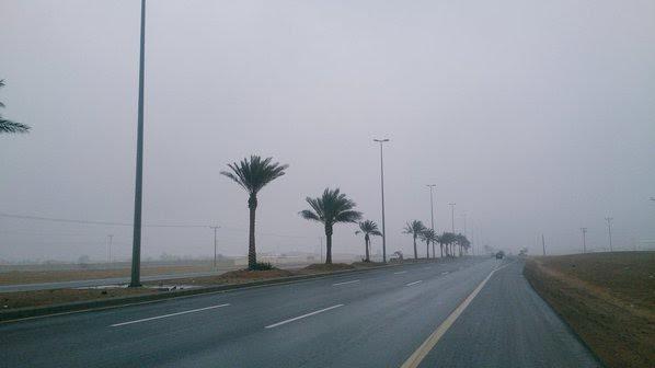 الجمعة.. ضباب وأمطار وحرارة