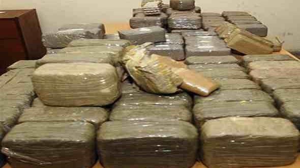 أكادير.. إحباط محاولة تهريب مخدرات بقيمة 30 مليون سنتيم