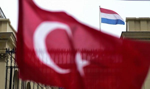 البوليميك بين تركيا وهولندا.. ما حدها تقاقي وهي تزيد في البيض!!