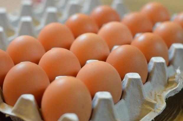 مكتب السلامة الصحية: بيضنا ما عندو باس