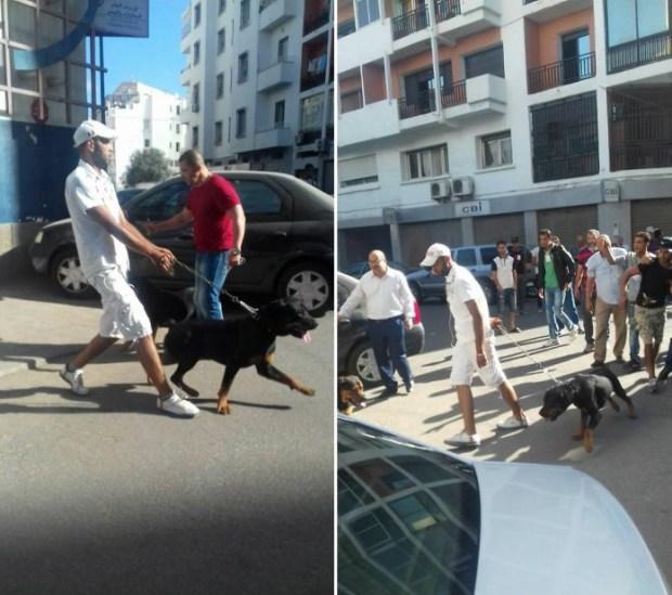 نوضوها صباط.. عصي وكلاب في مؤتمر الاستقلال فكازا (فيديو)