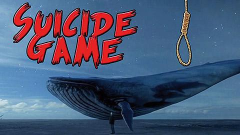 """4 حالات انتحار لمراهقين ووزارة العدل تحقق.. لعبة """"الحوت الأزرق"""" قلبات الدنيا فالجزائر (فيديوهات)"""