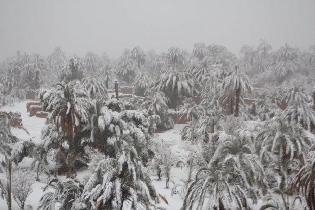 بعد أزيد من 50 عاما.. الثلوج في زاكورة (صور وفيديو)