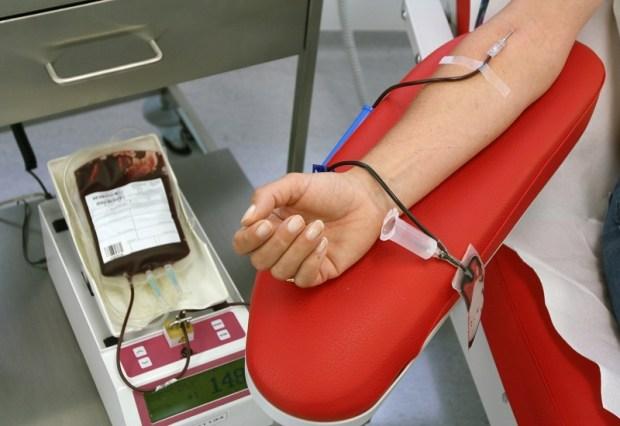 مركز تحاقن الدم في تطوان.. صفر كيس!