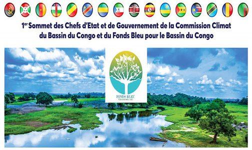 تبعاً لإعلان مراكش.. عمل كبير ينتظر لجنة المناخ بحوض الكونغو