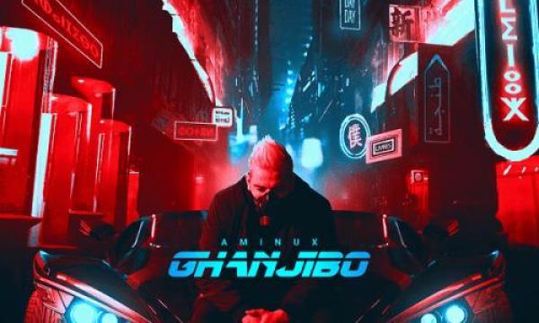 """بعد غياب طويل.. أمينوكس يعود بأغنية """"غانجيبو""""(فيديو)"""