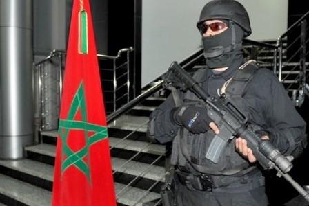 """بعد انهيار """"داعش"""".. الشرقاوي يحذر من """"الذئاب المنفردة"""""""