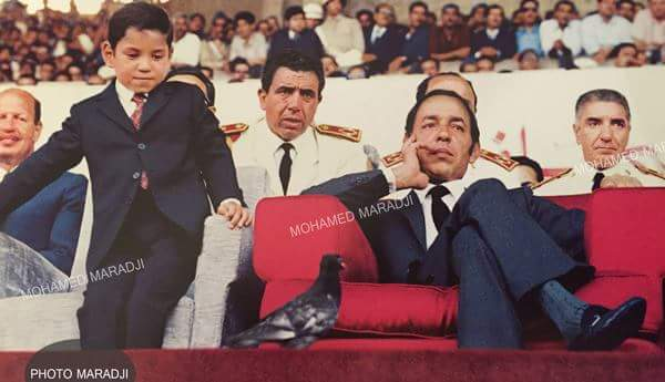 حكاية صورة.. حمامة تأسر نظر الملك محمد السادس في مباراة لكرة القدم