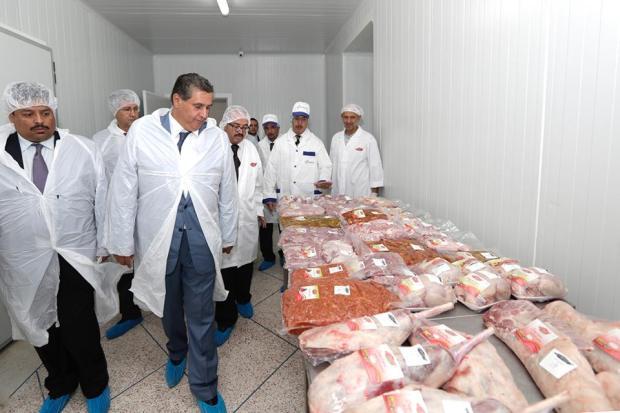 استعدادا لعيد الأضحى.. أخنوش كيتبرّا من مهنيي اللحوم