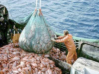 المغرب مرتاح.. اتفاق الصيد البحري مع الاتحاد الأوروبي سالا