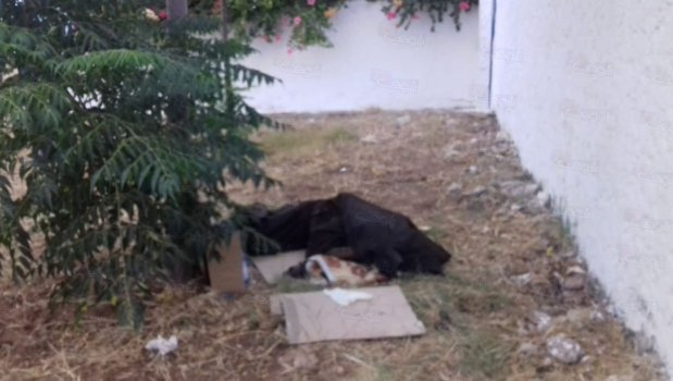 بالصور من كازا.. وفاة متشرد على باب مستشفى محمد الخامس