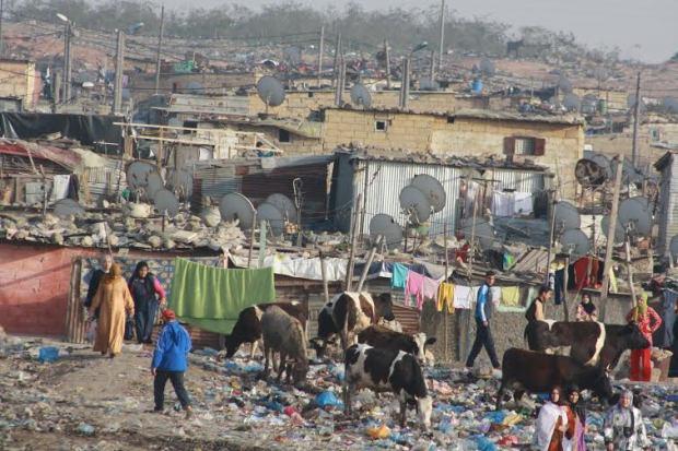 مجلس بركة: البطالة والفوارق تجاوزت حدود المقبول… ومحاربة الفقر ضرورة للاستقرار