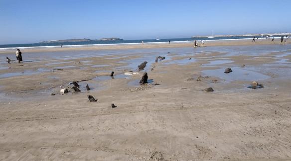 شاطئ الصويرة.. العثور على حطام سفينة أثرية