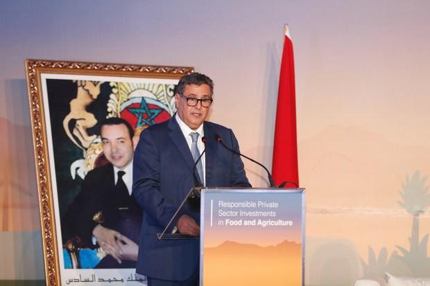 مراكش.. عزيز أخنوش يؤكد اهتمام المغرب بالاستثمار الخاص في المجال الفلاحي