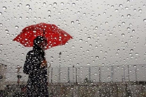 اليوم الثلاثاء.. ضباب وقطرات مطرية