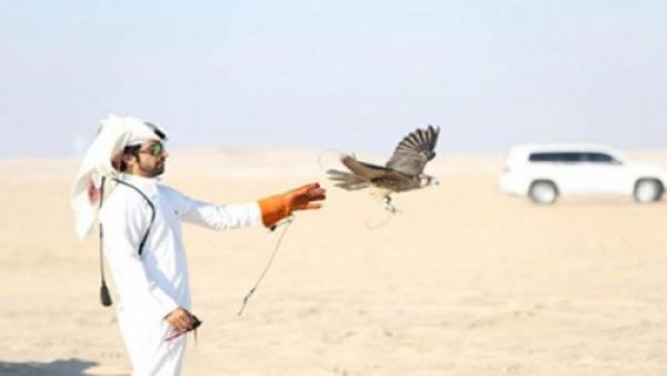 """مشاو يصيّدو الحبار.. """"أمراء"""" قطريون في ضيافة البوليساريو!!"""