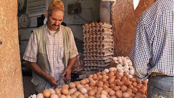 كل واحد استهلك 185 بيضة.. المغاربة شبعو بيض فـ2018