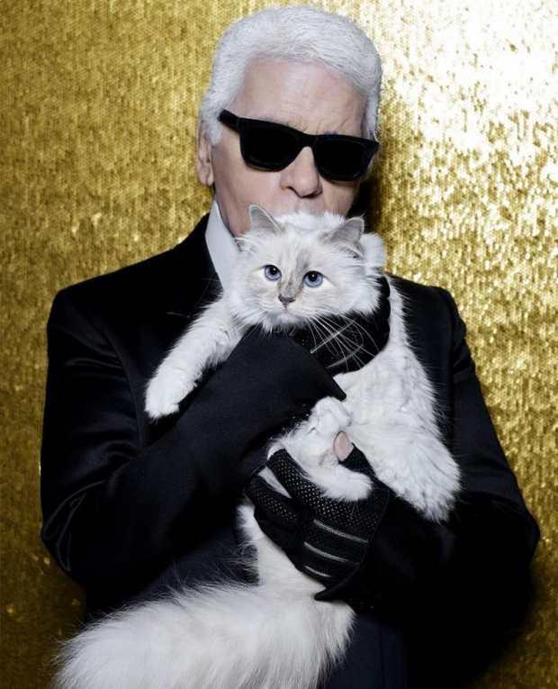 خلا ليها الملايين.. قطة المصمم كارل لاغرفيلد ضامنة مستقبلها!