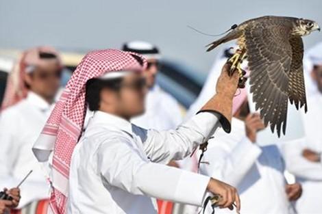 """""""المحميات الخليجية"""" في المغرب.. برلماني يسائل وزير الداخلية"""