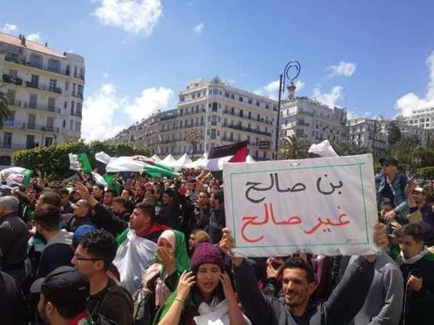 نايضة فالجزائر.. إضراب عام ومسيرات رفضا لتنصيب بن صالح (صور وفيديو)