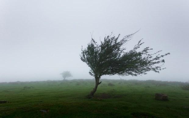 اليوم الأحد.. أمطار ورياح قوية