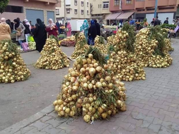 أسعار البصل.. الحكومة تتدخل لتخفيض الأثمنة