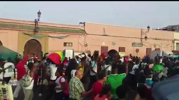 بالفيديو.. سينغاليون في المغرب يحتفلون بتأهل منتخبهم إلى نهائي الكان