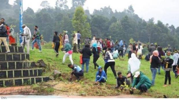 رقم قياسي.. إثيوبيا تزرع 353 مليون شجرة في يوم واحد