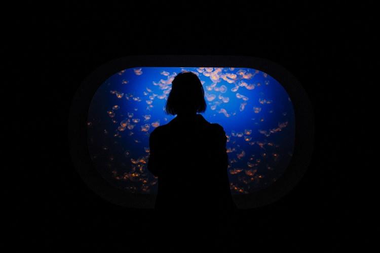 Cecilie @ Monterey Bay Aquarium