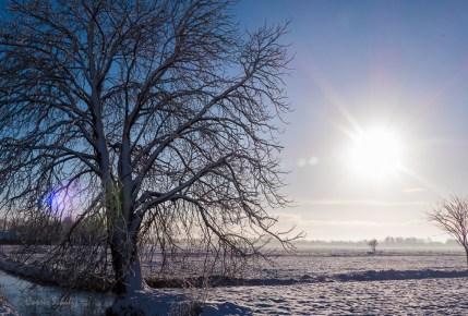 Winter in de Waver