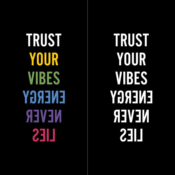 trust your vibes (embroidered)