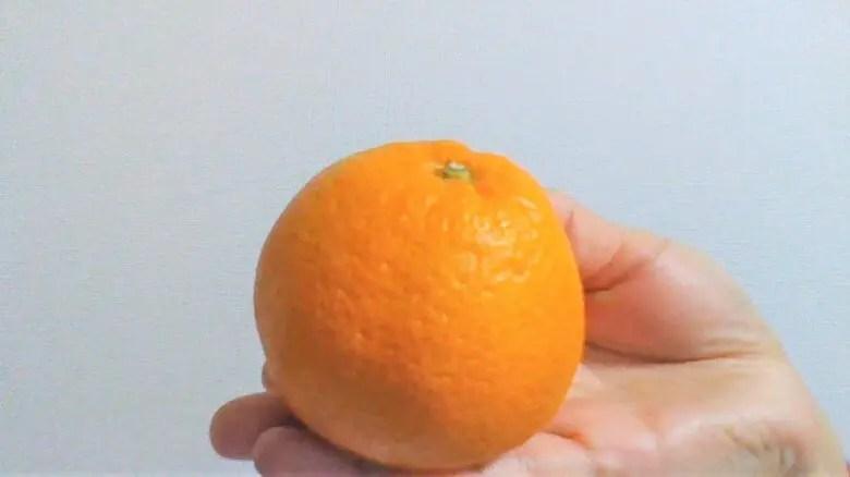 つわりがきっかけ。みかんが食べたい。柑橘系を好きになったらお腹の子は男の子